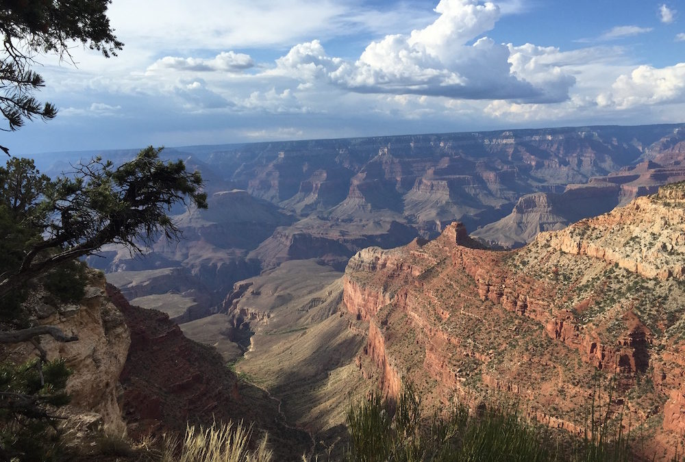 Celebrating National Parks in your Classroom